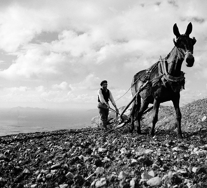 Ploughing the Fields